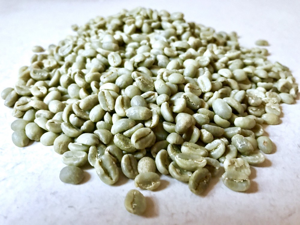 Green, un-roasted coffee beans.